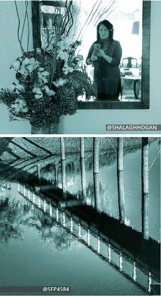 Collage of two photos vertically arranged. Top photo is a woman in a hallway taking a selfie reflected in the mirror behind a floral arrangement taken by @ShalaghHogan https://www.instagram.com/p/B8y2WuXAYG6/. Bottom photo is a beach with the reflection of a bridge and trees in the water taken by @SFP4584 https://www.instagram.com/p/CG8WESgp3Xb/.
