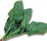Verduras, Espinacas, Calcio, Col, Cebolla, Berros, Cardo, Acelga, Grelos, Brocoli, Alimentacion,
