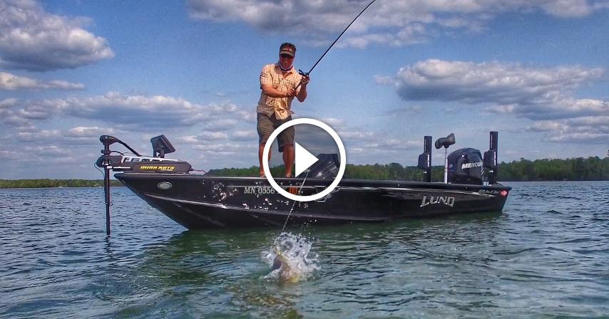 Power fishing jerkbaits for bass how to fish tips for Bass fishing jerkbaits