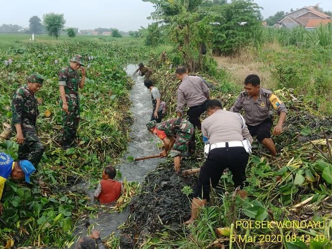 Antisipasi Banjir Forkopimka Wonoayu Kerja Bakti Bersih Sungai