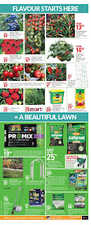 Canadian Tire Flyer May 19 – 25, 2017