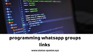 Programming Whatsapp Groups Links