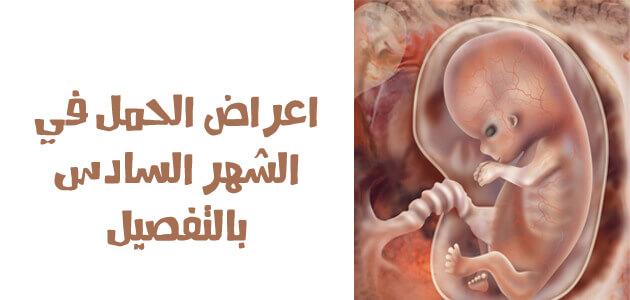 جنين داخل الرحم