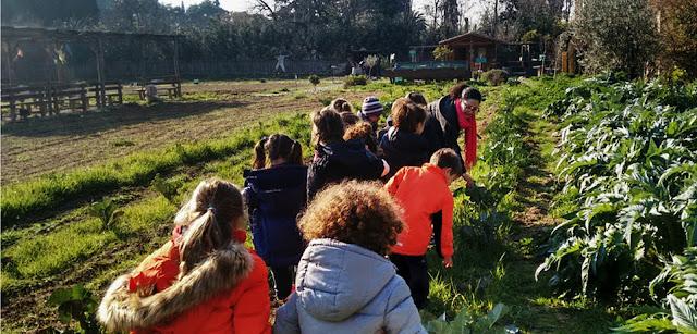 Δείτε τα βιωματικά προγράμματα περιβαλλοντικής εκπαίδευσης της Οργάνωσης Γη στο Πάρκο Τρίτση