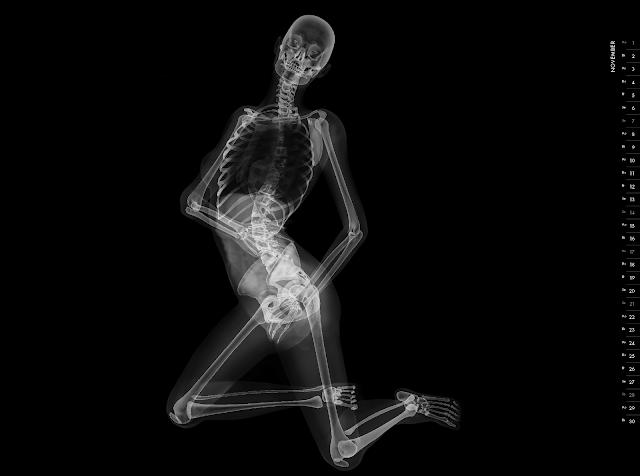 Eizo nude X-ray calender 2010 november