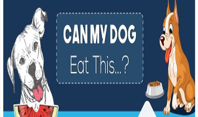 Can My Dog Eat That #infographic