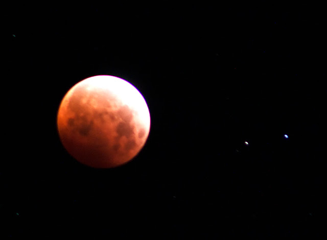 Cropped image of total lunar eclipse, 4:19 am (Source: Palmia Observatory)