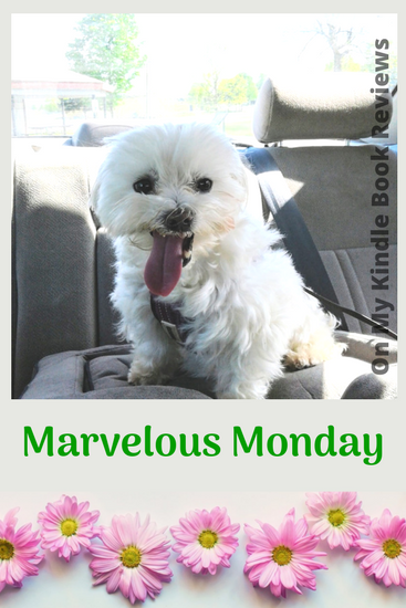 Mavelous Monday with Lexi: May 7, 2018, #LexiTheMaltese