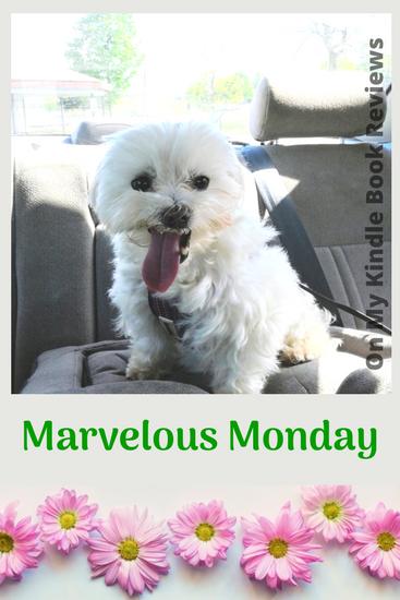 Mavelous Monday with Lexi: May 7, 2018, #LexiTheMaltese