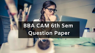 Mdu BBA CAM 6th Sem Question Papers 2019
