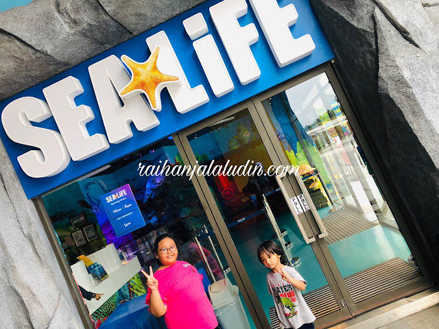 Review : Sea Life Legoland