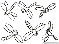 Realistic Dragonfly Coloring Pages For Kids
