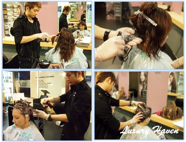 jass hair design shiseido f-program