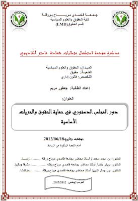مذكرة ماستر: دور المجلس الدستوري في حماية الحقوق والحريات الأساسية PDF
