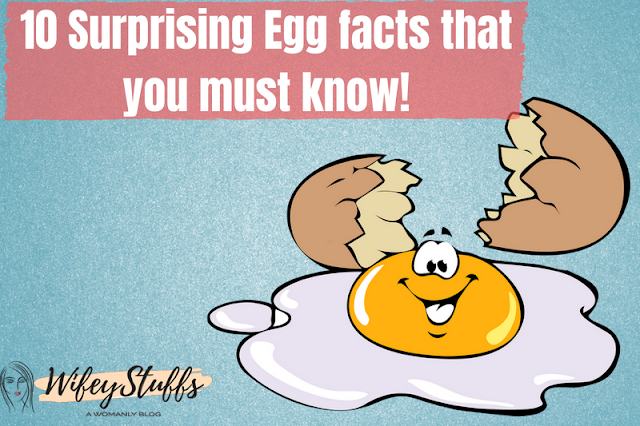 facts,egg facts,1 egg nutrition facts,surprising facts,birth day surprising facts,amazing facts,true facts,top 10,fun facts,interesting facts,egg vitamin chart,gravity falls facts,top gravity falls facts,chicken egg nutrition,10 interesting facts about bumblebees,horrifying facts,how to use boiled egg for blood sugar levels,egg nutrition white vs yolk,facts about,egg nutrition white,cooked egg benefits