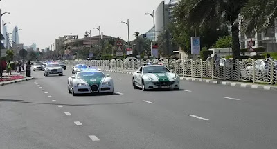 قسم جديد في شرطة دبي لمكافحة مخالفات الحيوانات المفترسة