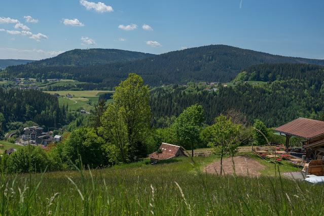 Premiumwanderweg Murgleiter | Etappe 4 von Schönmünzach nach Baiersbronn | Wandern nördlicher Schwarzwald 04