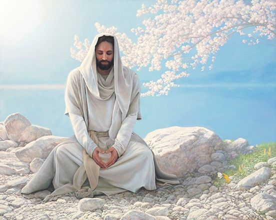 renungan katolik hari ini, bacaan injil