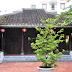 Đình Làng Hải Châu - địa điểm du lịch Đà Nẵng hấp dẫn nhất