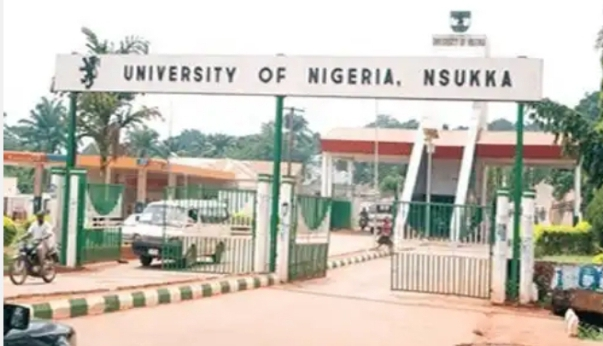 Courses Offered In UNN