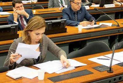 Deputada Rosana pede a João Doria que tire Baixada e Vale da Zona Vermelha