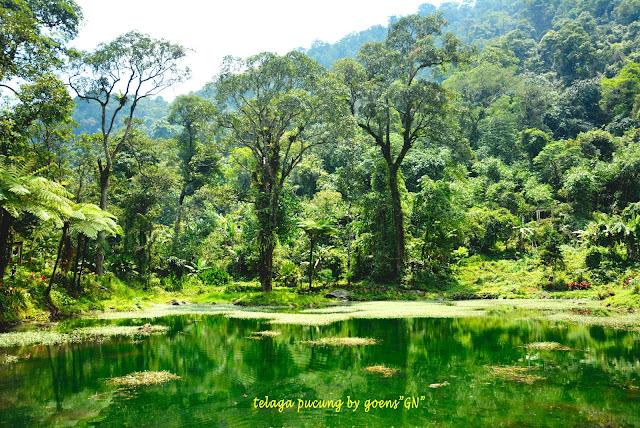 [CoC Regional: Lokasi Wisata] Menjelajah Tempat Wisata di Purwokerto Paling Inda