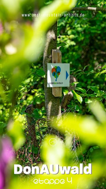 Premiumwanderweg DonAUwald  Etappe 4 von Dillingen nach Höchstädt 31