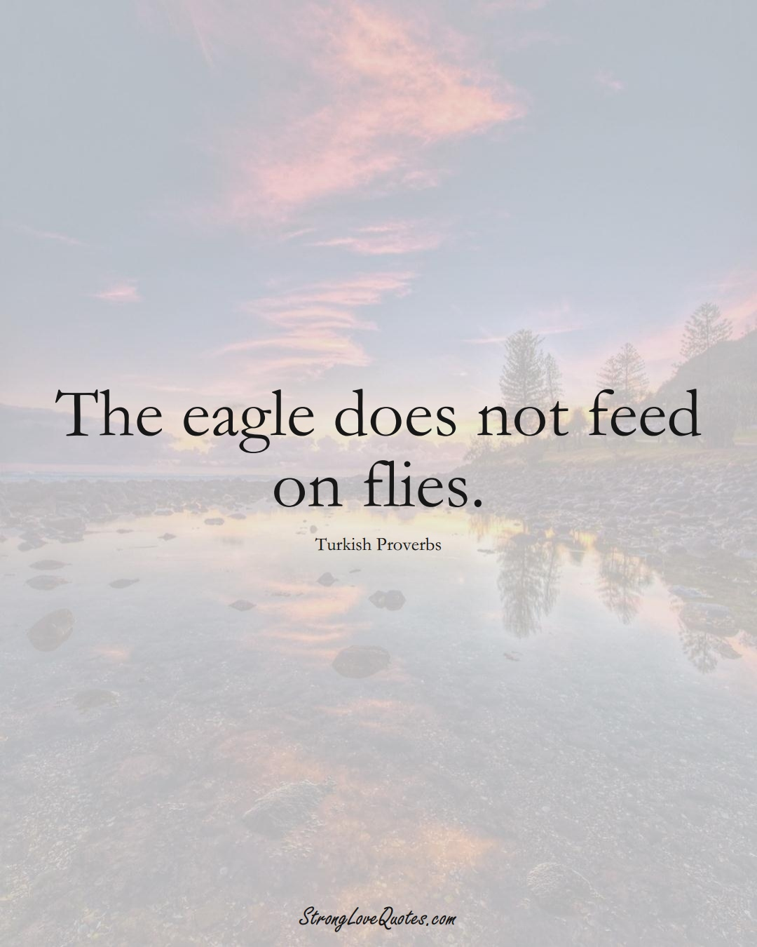 The eagle does not feed on flies. (Turkish Sayings);  #MiddleEasternSayings