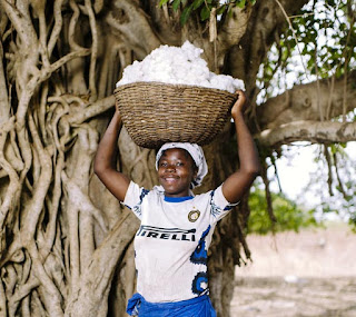 Balancing a basket of freshly harvested cotton on her head.