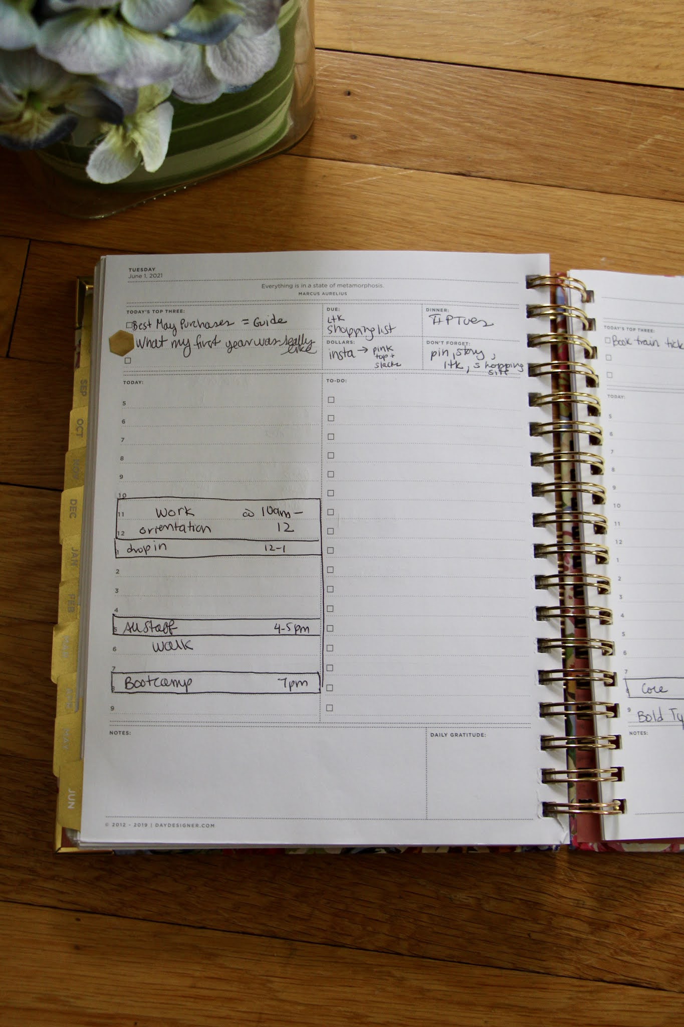 daily lay out planner