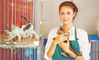 Atendente Pet shop - Inscrições