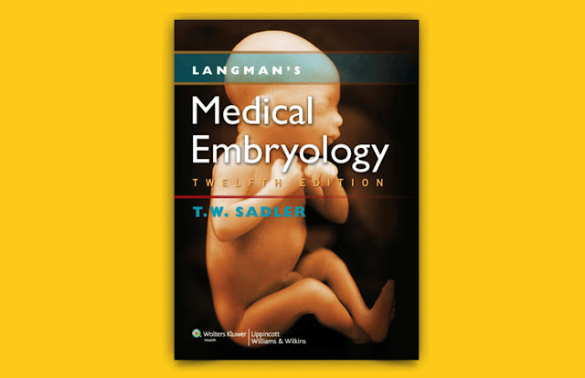 Download Langman's Medical Embryology 12th ed PDF for free