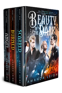 https://www.goodreads.com/book/show/42120452-beauty-of-the-dark