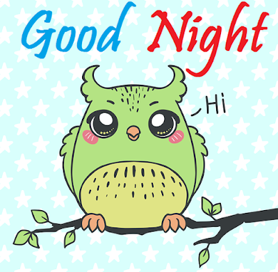good night cute birds images