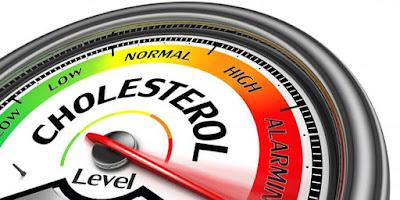 Obat Alami untuk Kolesterol Tinggi