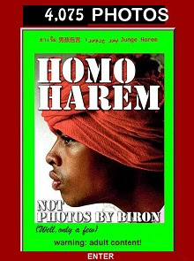 HOMO HAREM Revisited