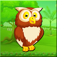 G2J Great Harned Owl Escape