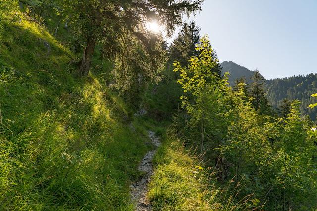 Wandertrilogie Allgäu | Etappe 51 Bad Hindelang-Schattwald/Tannheimer Tal 05