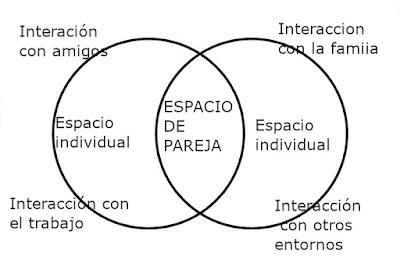 Distribución de roles de la pareja funcional
