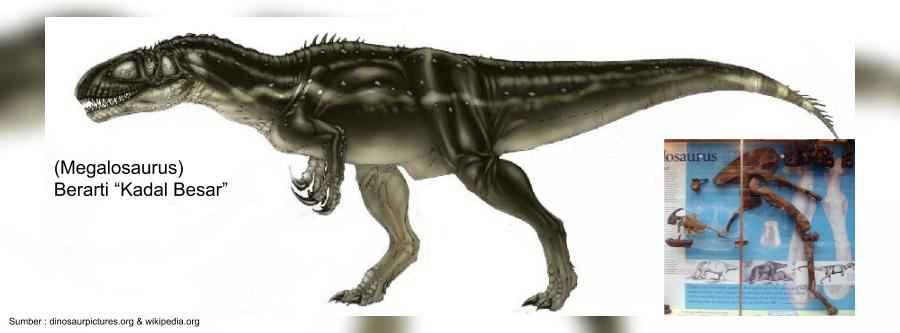 megalosaurus pemakan daging