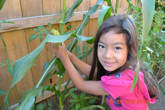 Crucial Tips To Help Kids Succeed At Gardening