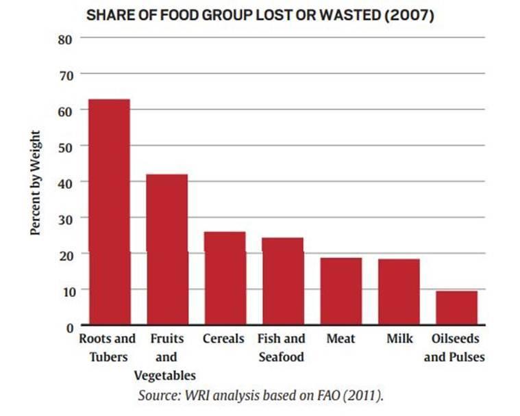 WRI Report on food we waste