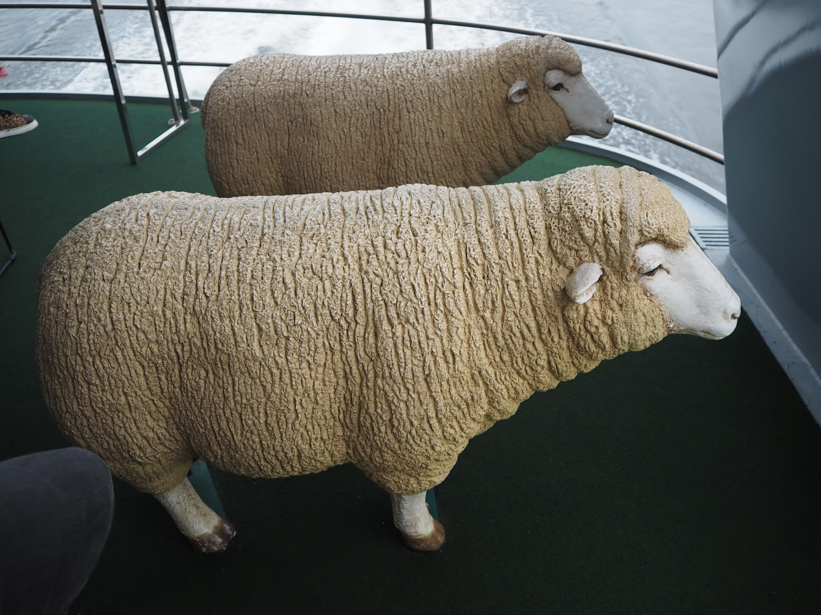 sheep shaped seats on ferry to mona gallery, tasmania