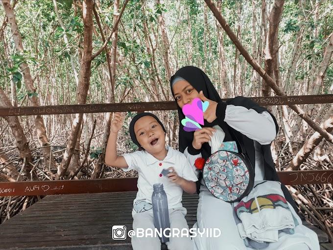 Mengenal Hutan Mangrove Bali dan Seisinya