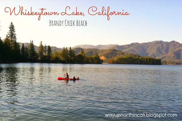 Brandy Creek Beach, Whiskeytown Lake, Redding California. This is a great blog all about things to do in Northern California. www.wayupnorthincali.blogspot.com