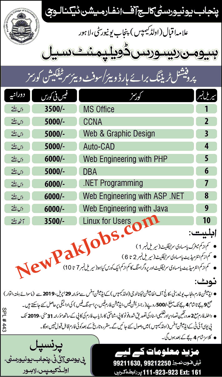 Professional Training for Hardware, Software Courses by Govt of Punjab 2019