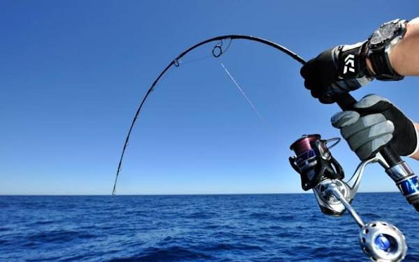 Các loại hình và kỹ thuật cơ bản về câu cá ở biển