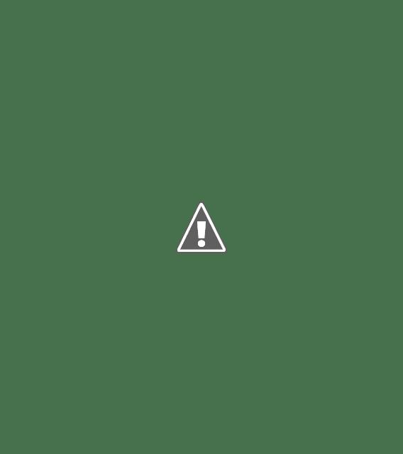 slim women's long-sleeved professional wear small suit jacket