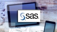sas-programming-for-beginners