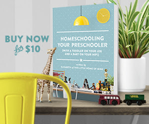 Homeschooling Your Preschooler by Elizabeth of This Little Home of Mine https://gumroad.com/a/539505779